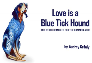Love is a Blue Tick Hound Title
